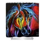 Gypsy Equine Shower Curtain