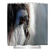 Gypsy Eye Shower Curtain