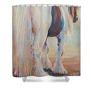 Gypsy Falls Shower Curtain