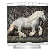 Gypsy Forest Shower Curtain