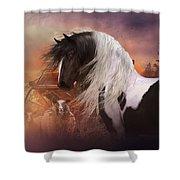 Gypsy On The Farm Shower Curtain