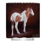 Gypsy Promise Shower Curtain