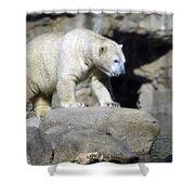 Habitat - Memphis Zoo Shower Curtain