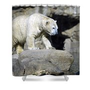 Habitat - Memphis Zoo Shower Curtain