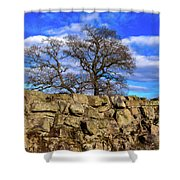Hadrians Tree Shower Curtain