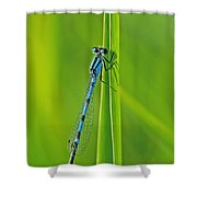Hagens Bluet Shower Curtain