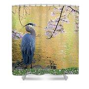 Haiku, Heron And Cherry Blossoms Shower Curtain