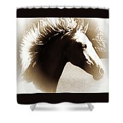 Hair Raising Shower Curtain