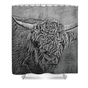 Hairy Highlander Bw Shower Curtain