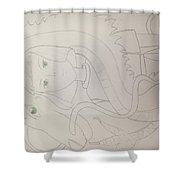 Haku The Dragon Shower Curtain