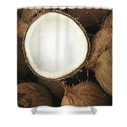 Half Coconut Shower Curtain by Brandon Tabiolo - Printscapes