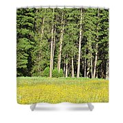 Half Dome Meadow Shower Curtain