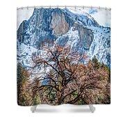 Half Dome Meadow Tree Winter Shower Curtain