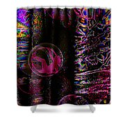 Hall Of Dreams Shower Curtain