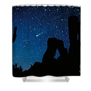 Halley's Comet Shower Curtain