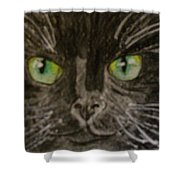 Halloween Black Cat I Shower Curtain