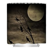 Guardians Of The Lake Shower Curtain
