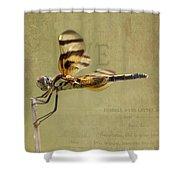 Halloween Pennant Dragonfly Shower Curtain