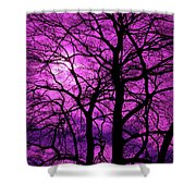 Halloween Trees No 3 By Dm Carpenter Shower Curtain