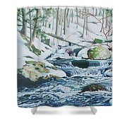 Hamburg Mountain Stream Shower Curtain