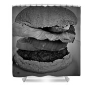 Hamburger And Potato Salad 4 Shower Curtain