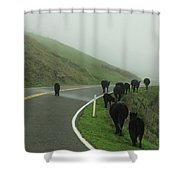 Hamburger Hill Shower Curtain
