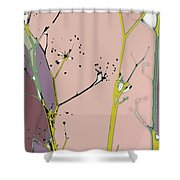 Hamptons Blush Shower Curtain