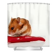 Hamster Eating A Red Hot Pepper Shower Curtain
