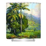 Hanalei River Moonrise Shower Curtain