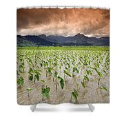 Hanalei Taro Shower Curtain