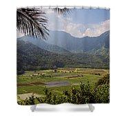 Hanalei Valley Taro Fields - Kauai Shower Curtain