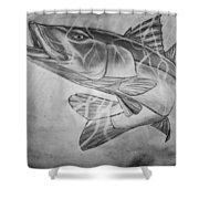 Hand Drawn Snook  Shower Curtain