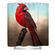 Handsome Cardinal Shower Curtain