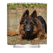 Handsome Fella Shower Curtain