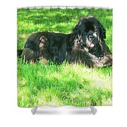 Handsome Guy Shower Curtain