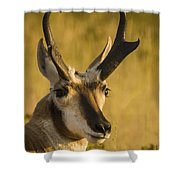 Handsome Is Shower Curtain