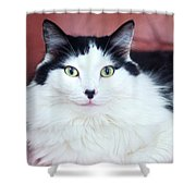 Handsome Tuxy Shower Curtain