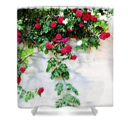 Hangin Roses Shower Curtain