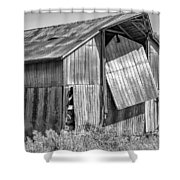 Hanging In - Bw Shower Curtain