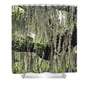 Hanging Moss Shower Curtain
