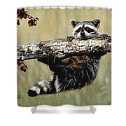 Hanging On Shower Curtain by Janet Moss