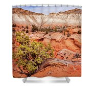 Hanging On The Cliff At Kodachrome Basin State Park Shower Curtain