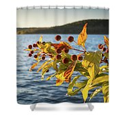 Hanging Out At The Lake Shower Curtain