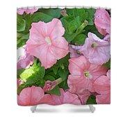 Hanging Pink Petunias Basket Shower Curtain
