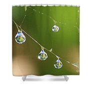 Hanging Plants Shower Curtain