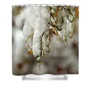 Hanging Snow Shower Curtain