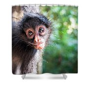 Hanging Spider Monkey Shower Curtain