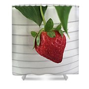 Hanging Strawberry Shower Curtain