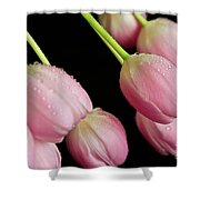 Hanging Tulips Shower Curtain by Tracy Hall