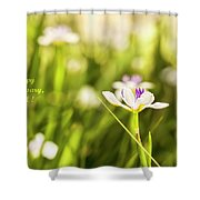 Happy Anniversary African Iris Shower Curtain